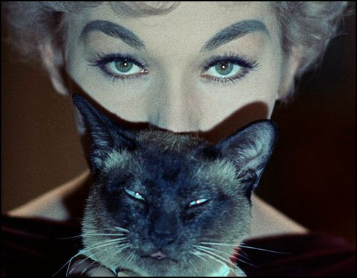 Witch Jill ( Kim Novak ) and her magic cat Pyewacket (Bell, Book and Candle,  a 1958 American romantic comedy film directed by Richard Quine)