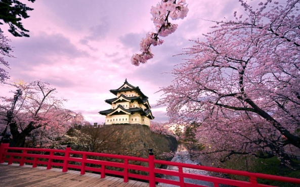 Temple bells die out. The fragrant blossoms remain. A perfect evening! (Marsuo Basho)