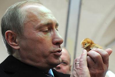 V. Putin and a chick
