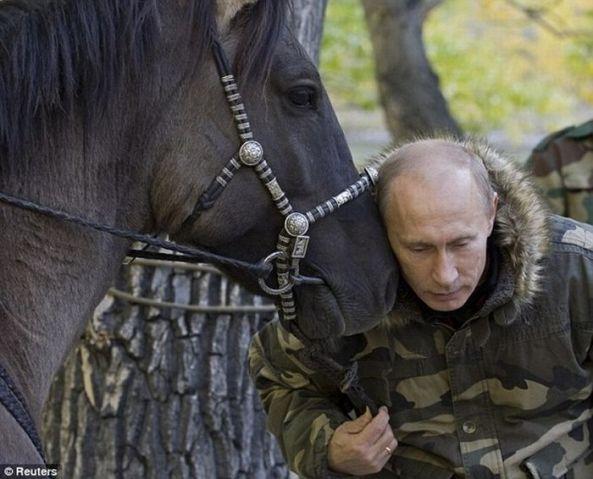 V. Putin and horse