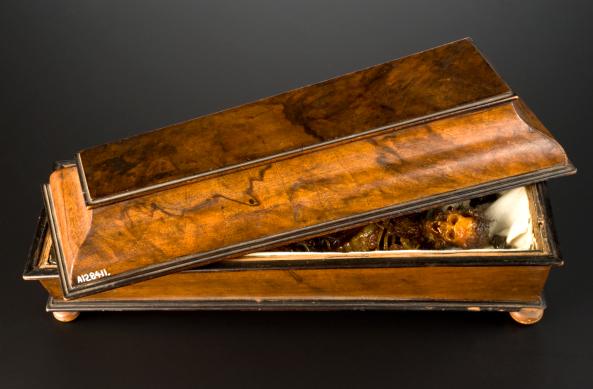 Wax model of a decomposing body in a walnut coffin, Italy, 1774-1800