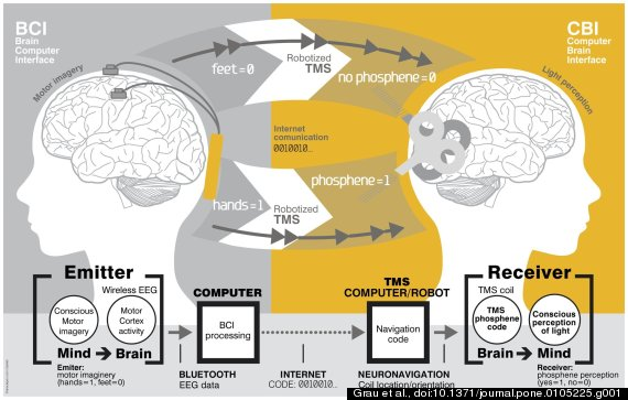 o-BRAIN-TO-BRAIN-COMMUNICATION-570
