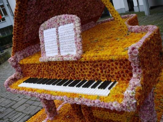 chrysanthemum-festival-2009-9
