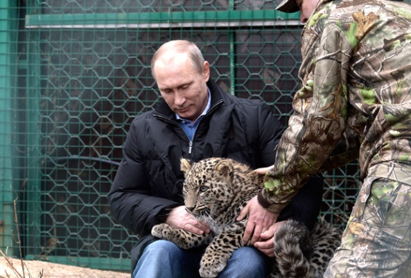 Putin and Animals 3