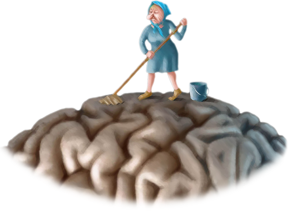 чистка-мозга